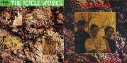 [Icicle Works CD and Cassette]
