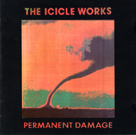 [Permanent Damage Album]